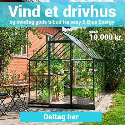 Vind 10.000 kr. til et drivhus